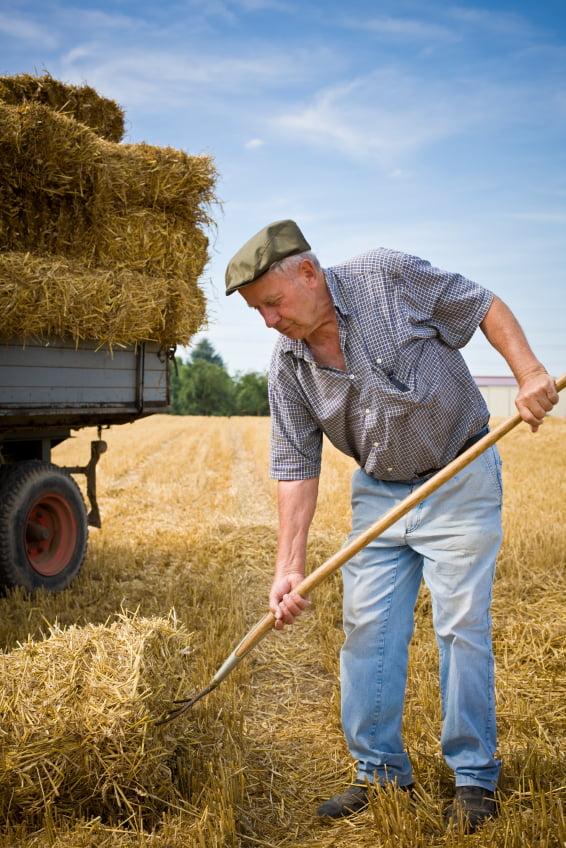 audios para aprender inglés - daway inglés - farmer